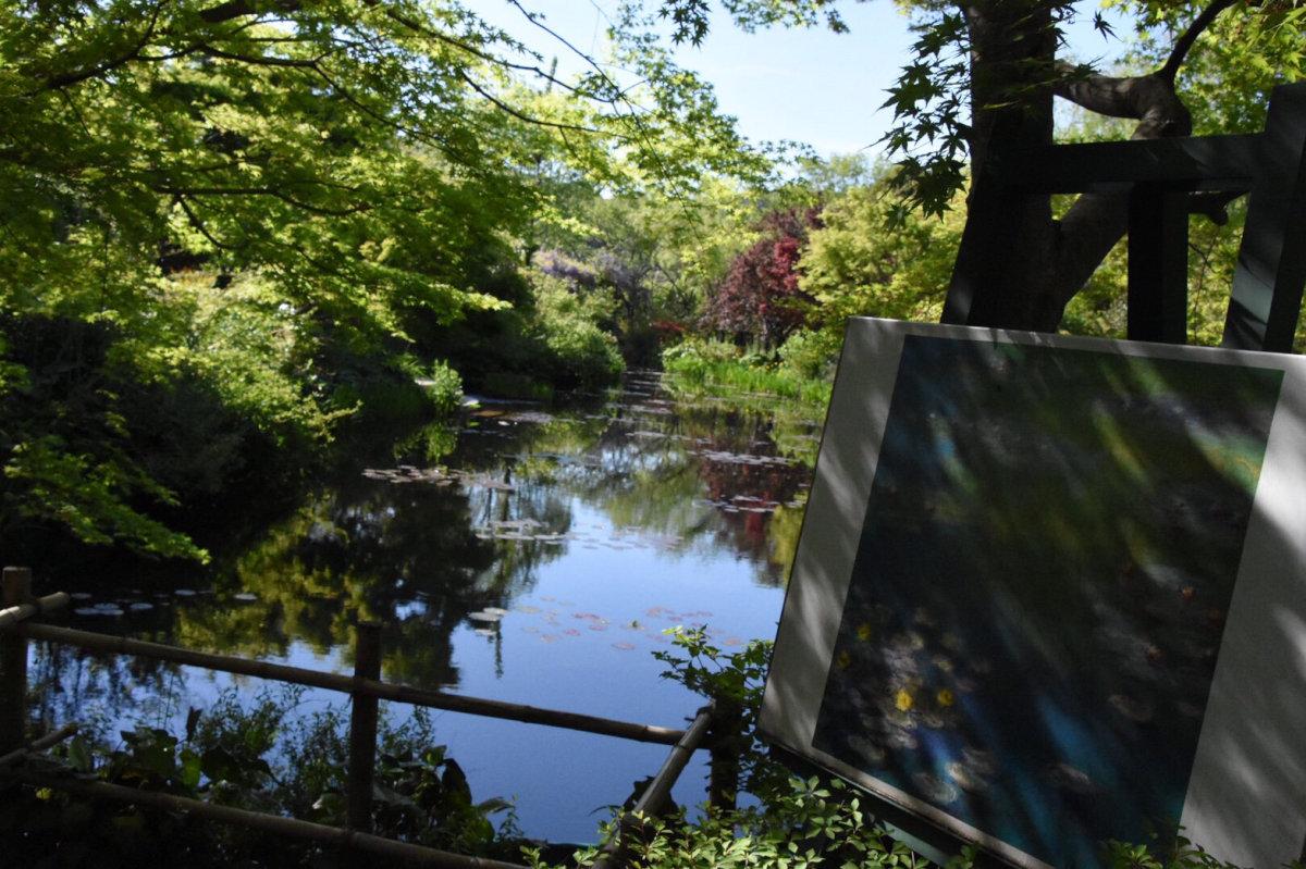 花の楽園「北川村モネの庭マルモッタン」