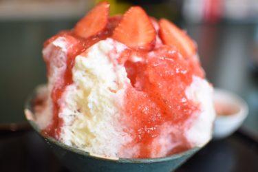 夏の避暑グルメ!並んでも食べたい絶品かき氷「ラフディップ」