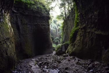 まるでもののけ姫 自然が作り上げた、神秘のパワースポット 「伊尾木洞」