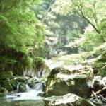 日本一美しい川の水源 「安居渓谷」