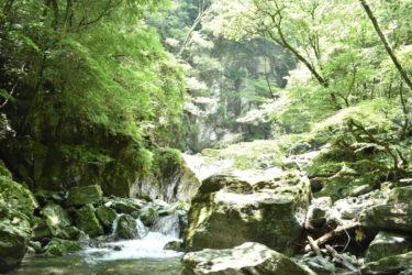 日本一美しいと言われる川の水源 「安居渓谷」
