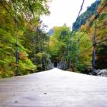 風情溢れる吊り橋と無限に広がる紅葉を大満喫「瀬戸川渓谷」