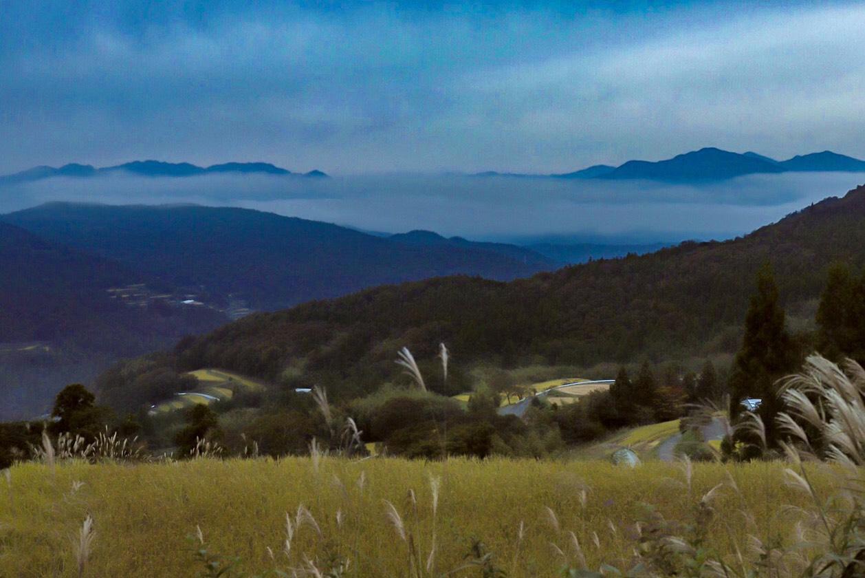 自然が奏でるアート、絶景雲海。「やまなみ雲海展望台」