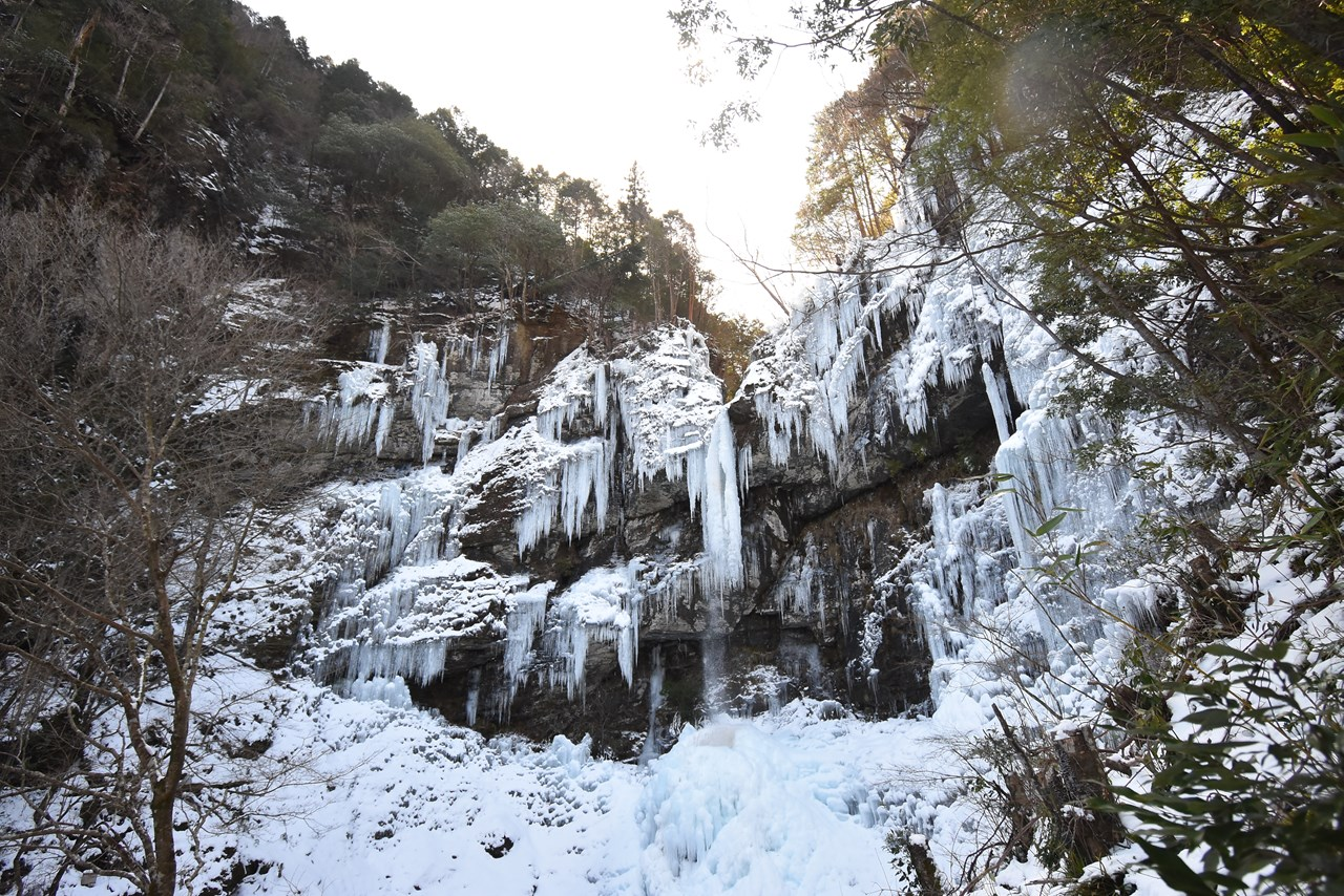 【大瀧の滝】滝が全部凍る?!自然の芸術作品。